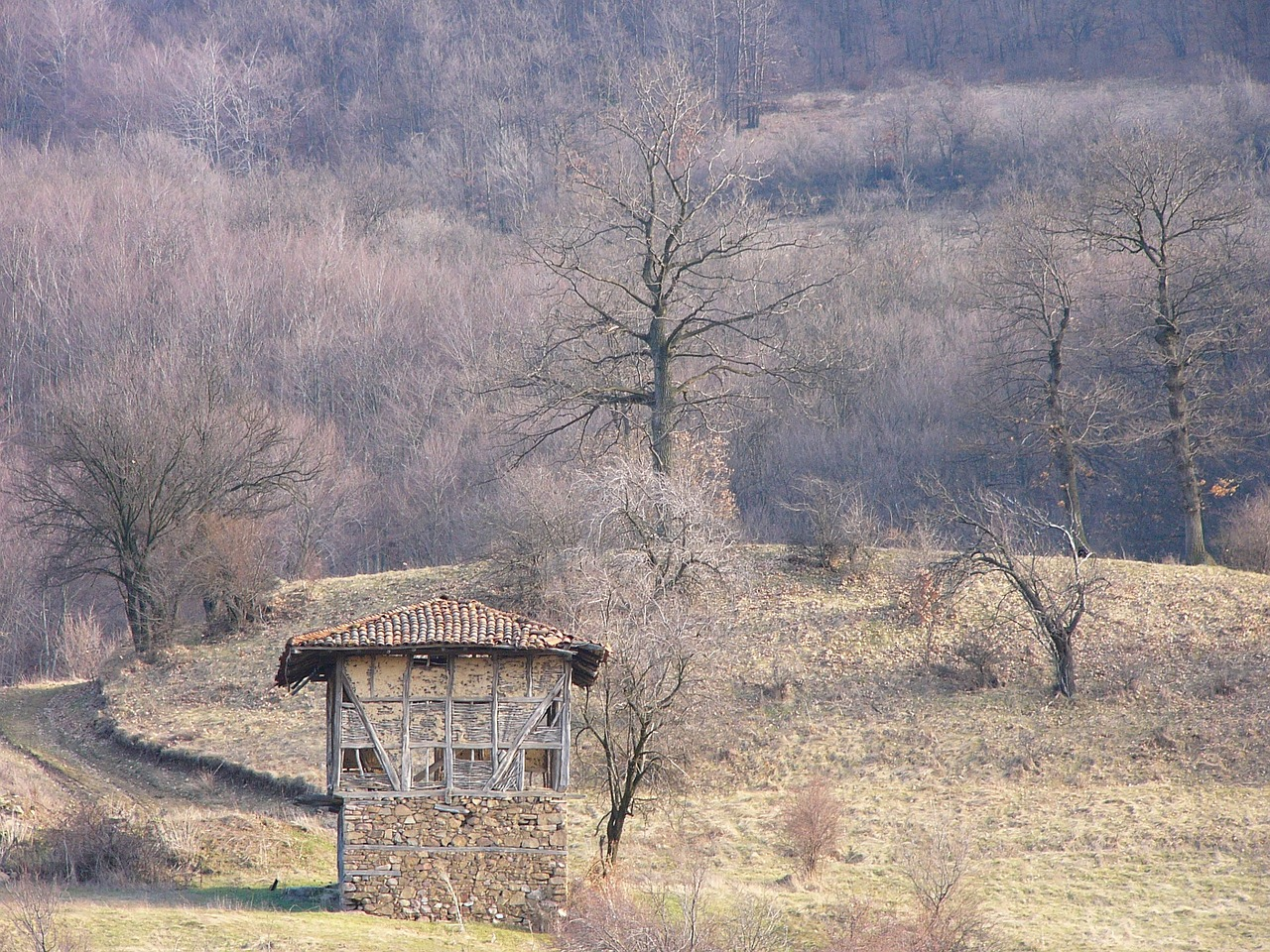 bulgaria-1064159_1280